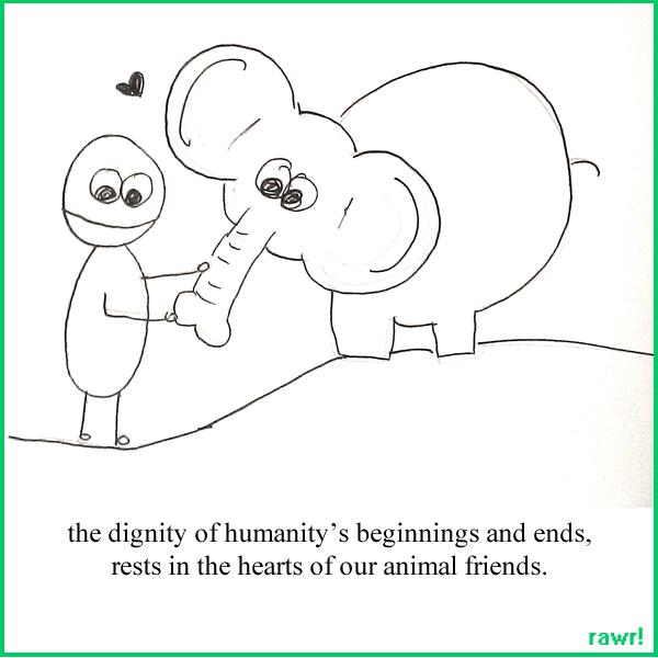 http://animalspirits222.wordpress.com/
