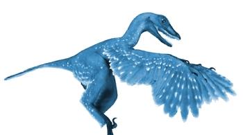 rarasaur