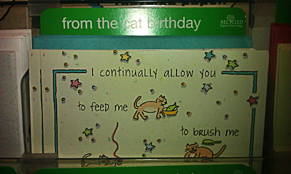 This is a section specifically for birthday carts sent on behalf of cats.  We live in a wonderful world.