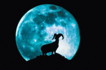 aries moon, horoscope