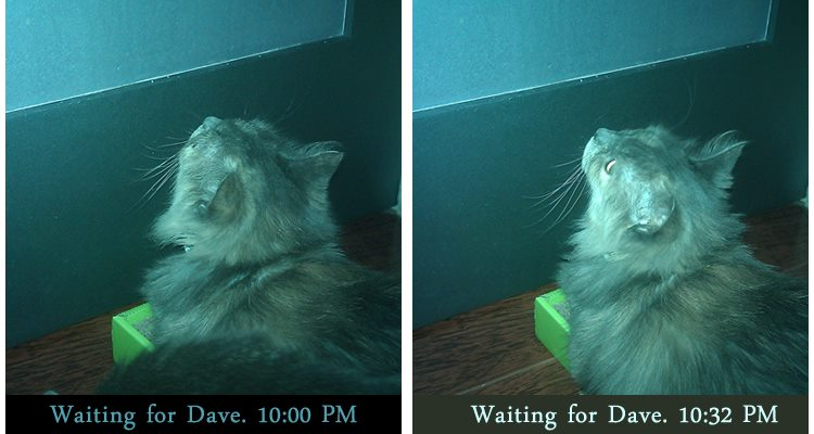 She waits.